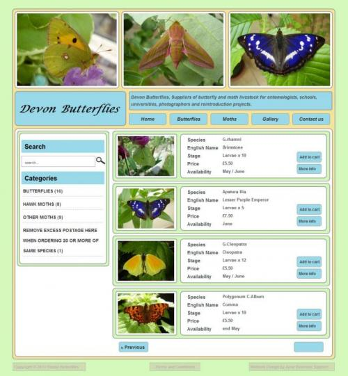 Devon Butterflies